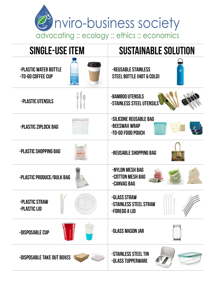Sustainable Solutions for Single Use Items1